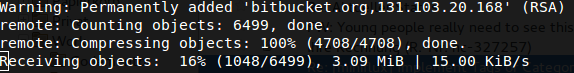 Bitbucket Fail